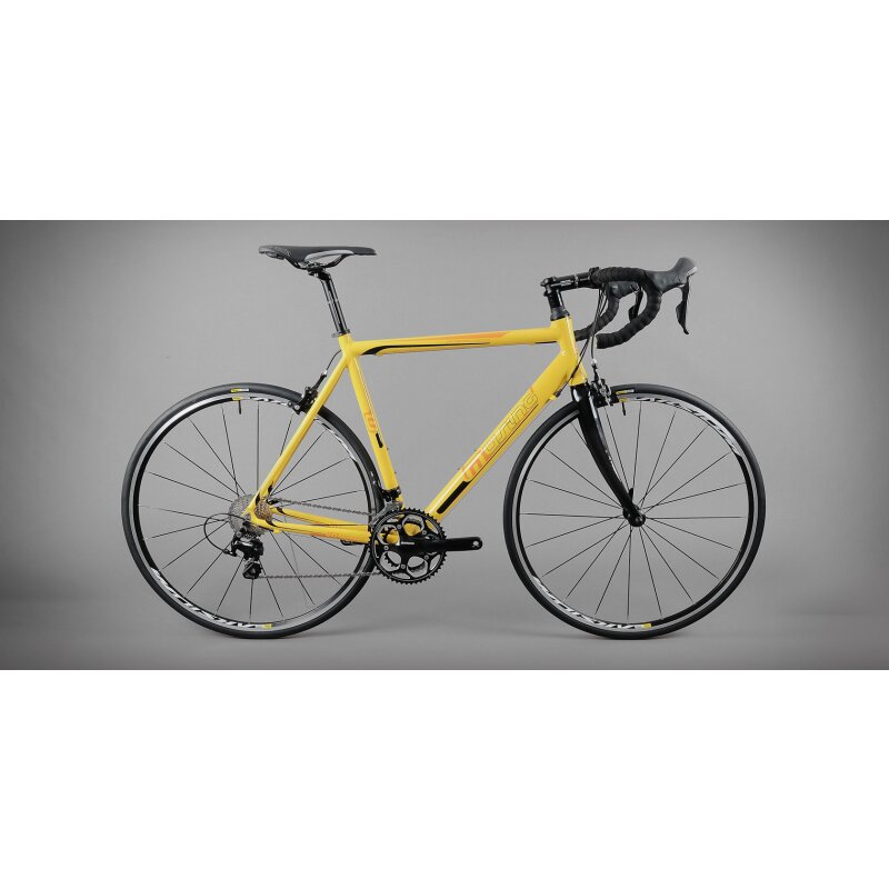 Müsing Onroad Comp Rahmen - Bikebude24 - Shop, 299,00 €